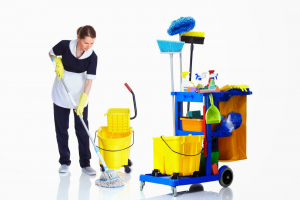 cleaning services in croydon